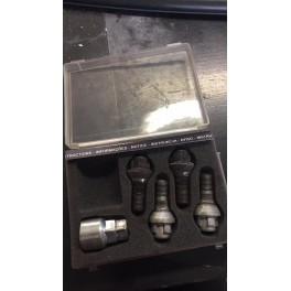 Lot de 4 écrous antivol pour Peugeot 206